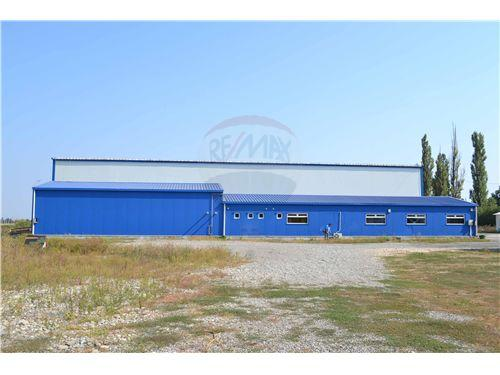 Industrial / Logistica / Productie Chitila 4
