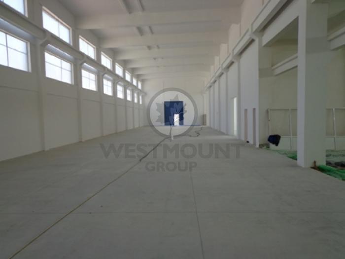 Industrial / Logistica / Productie Otopeni 7