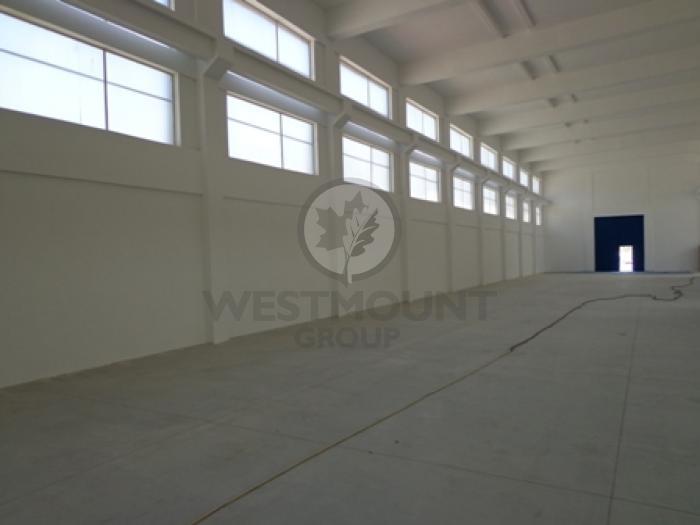 Industrial / Logistica / Productie Otopeni 9