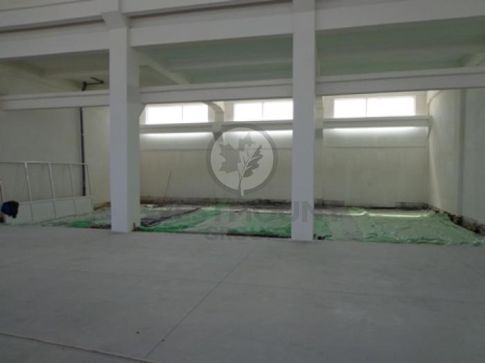 Industrial / Logistica / Productie Otopeni 8