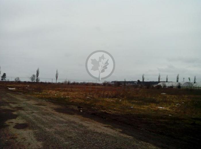 Industrial / Logistica / Productie DN1 - Sos. Bucuresti-Ploiesti