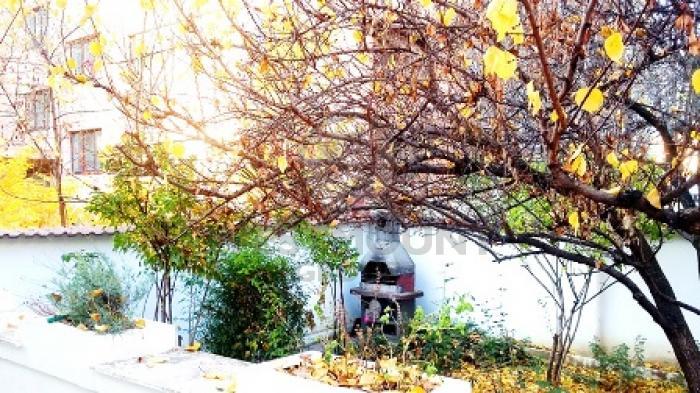 Casa / Vila 5 camere Herastrau 6
