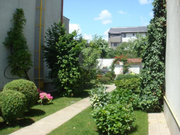 Casa / Vila 5 camere Damaroaia 5