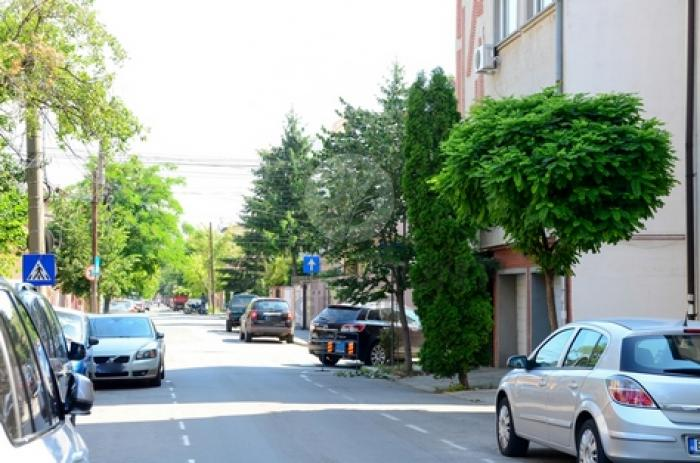 Apartament 3 camere Domenii (Casin) 5