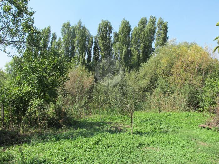 Lot teren rezidential 3 camere Fundeni